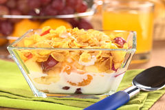 Corn Flakes with Fruits and Milk Royalty Free Stock Images