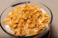 Corn flakes in a glass plate with milk on a gray background stock images