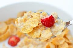 Corn Flakes, Milch, Erdbeeren stockbild