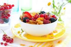 Corn flakes  and milk Royalty Free Stock Image