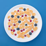 Corn flakes in milk with berries Royalty Free Stock Images