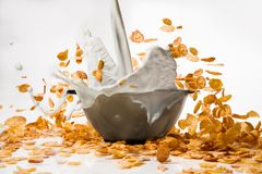 Corn flakes with milk pouring from glass Stock Photography