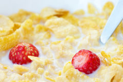 Corn flakes, milk and strawberries Stock Photos