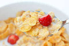 Corn flakes, milk, strawberries Stock Image