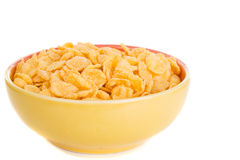 Corn flakes in plate Stock Images