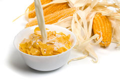 Corn flakes served with fresh milk Royalty Free Stock Photo