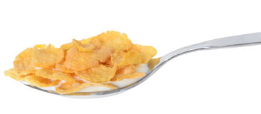 Corn flakes in a spoon with yogurt Stock Images