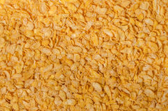 Corn flakes texture Royalty Free Stock Photography