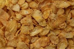 Corn flakes texture Royalty Free Stock Images