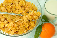 Corn-Flakes und Mandarine lizenzfreie stockfotos