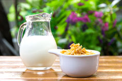 Corn flakes in white bowl and milk Royalty Free Stock Photos