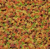 Corn- Flakesringe gefärbt Stockfoto