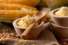 Corn flour in the bowl Royalty Free Stock Photography