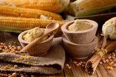 Corn flour in the bowl. Corn flour in wooden bowl with the cobs around Royalty Free Stock Image