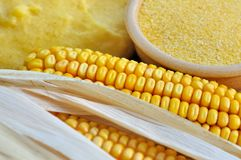 Corn flour for polenta Stock Photography