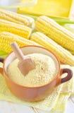Corn flour Stock Photography