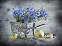 Corn-flowers and apples. Bouquet of blue corn-flowers and two apples Royalty Free Stock Image