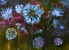 Corn flowers with buds at night. The dabbing technique near the edges gives a soft focus effect due to the altered surface roughness of the paper Stock Image