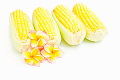 Corn and flowers Royalty Free Stock Images