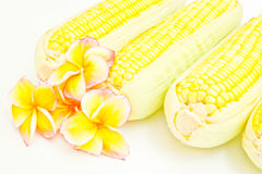 Corn and flowers Stock Photo