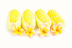 Corn and flowers Stock Images