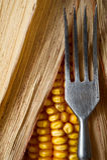 Corn and fork close-up. Stock Photos