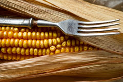 Corn and fork close-up. Stock Photography