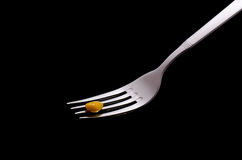 Corn on fork Stock Image
