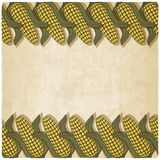 Corn frame old background Royalty Free Stock Photography