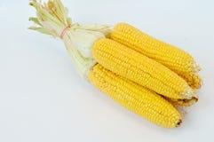 Corn fruit Royalty Free Stock Photography
