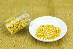 Corn generated ethanol bio-fuel with test tube Stock Images