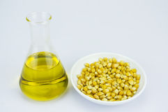 Corn generated ethanol bio-fuel with test tube Royalty Free Stock Image
