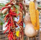 Corn, Gourd,Chili Royalty Free Stock Photos