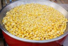Corn grain Royalty Free Stock Images