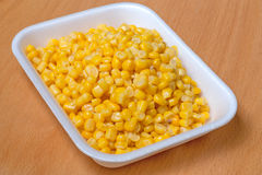 Corn grain in the container Stock Photos