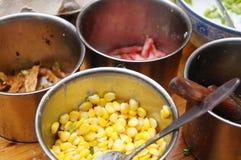 Corn grain Royalty Free Stock Photography