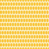 Corn grain seamless background. Corn grain in the form of a seamless background. Maize plant. Realistic vector creative illustration Royalty Free Stock Photography