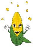 Corn and grains Stock Image