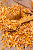 Corn grains Stock Photo