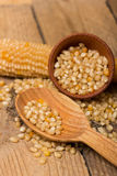 Corn grains Royalty Free Stock Images