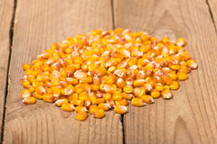 Corn grains. Yellow corn grains  on a wooden background Stock Photos