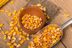 Corn grains. Yellow corn grains in a wooden pot on a wooden background Stock Photos