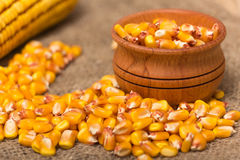 Corn grains. Yellow corn grains in a wooden pot on a wooden background Stock Images