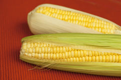 Corn with green leaf Royalty Free Stock Image