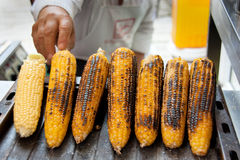 Corn on Grill Stock Photography