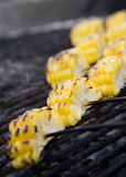 Corn on the grill Royalty Free Stock Images