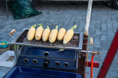 Corn on grill Royalty Free Stock Photo