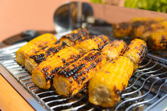 Corn on the grill Royalty Free Stock Image