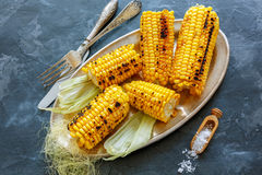 Corn grilled with sea salt on a metal tray. Stock Photography