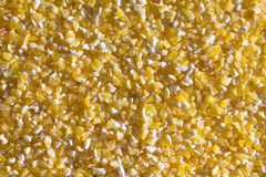 Corn grits. Close up bla Royalty Free Stock Photography